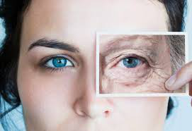 Two Conserved Epigenetic Regulators Prevent Healthy Ageing