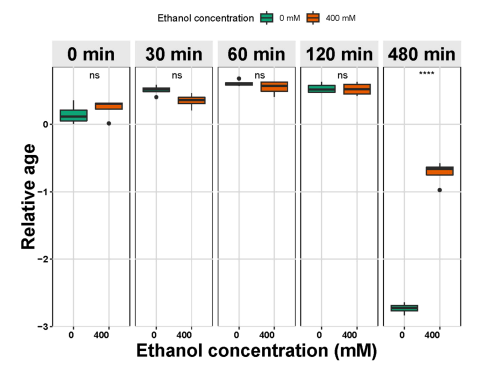 Effects of ethanol exposure on the transcriptome of C. elegans