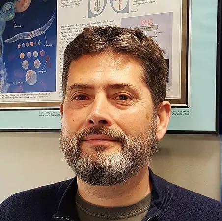 Antonio Miranda Vizuete