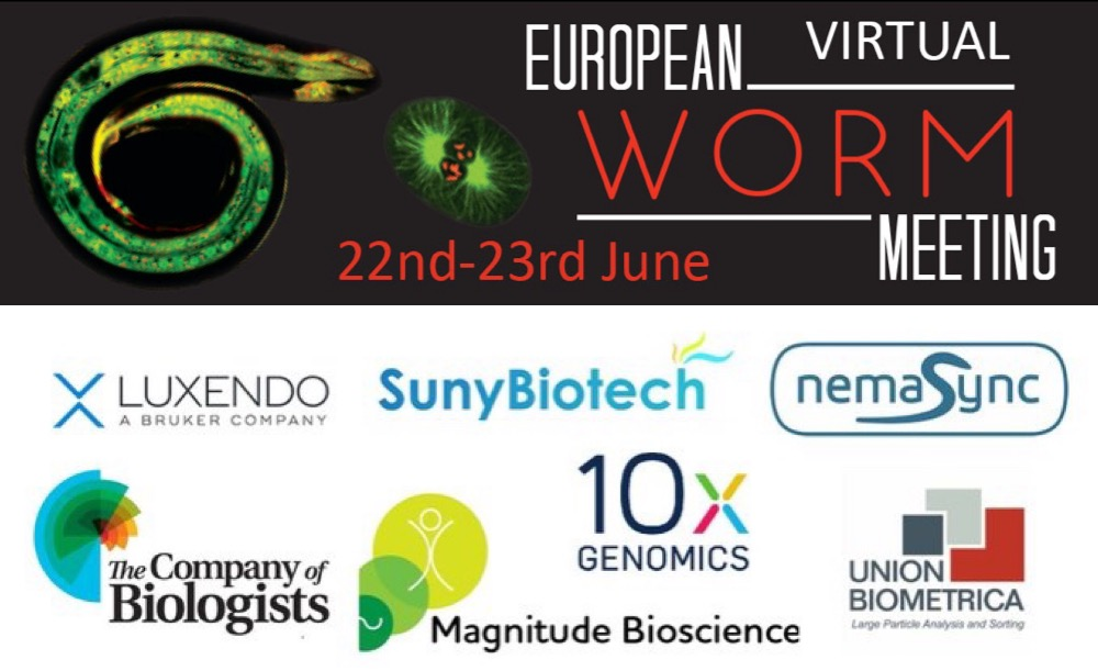 Time Limited C. elegans editing promotion for European Worm Meeting